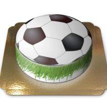 footballgrass_2
